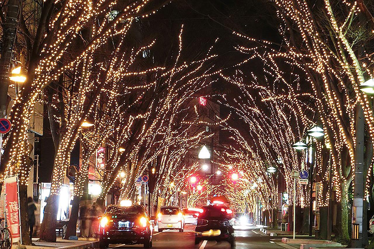 新潟市駅南 冬の風物詩「NIIGATA 光のページェント」開催